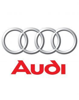 Audi Gizli Özellik Açma